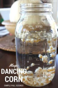 dancing corn activity