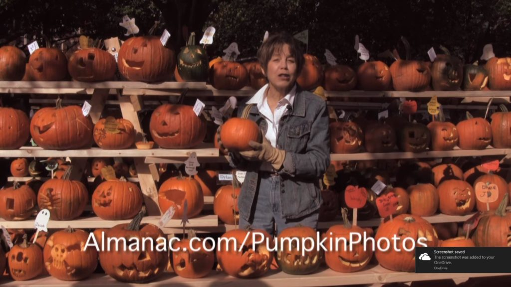 Pumpkins-Farmers Almanac